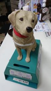 盲導犬募金箱 (1)